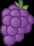 ícono de sabor a uva